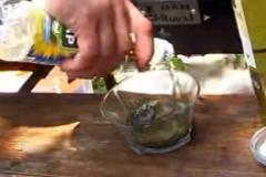 Заливаем специи маслом