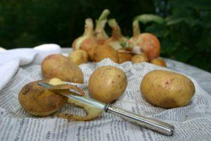 Картошка кожура