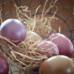 Красим яйца к пасхе своими руками! Традиции, методы, способы
