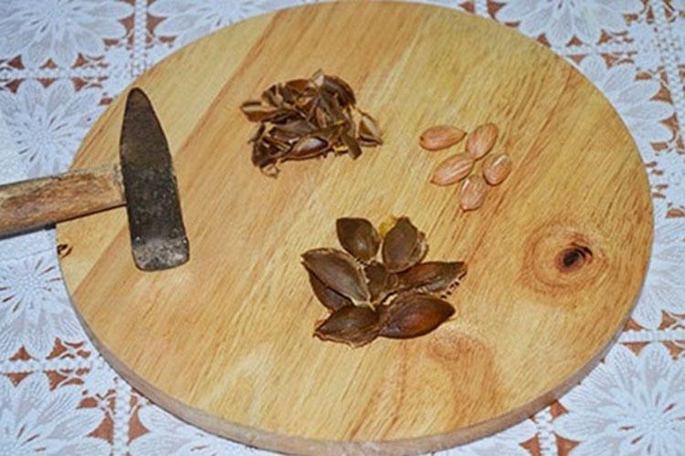 varenye-iz-celix-abrikosov-s-yadrishkami7