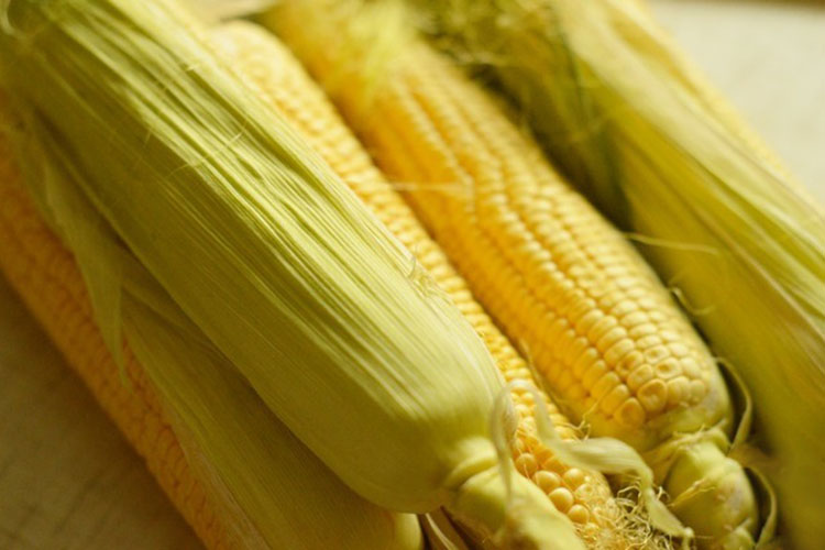 kukuruza-v-multivarke-v pochatkah 2