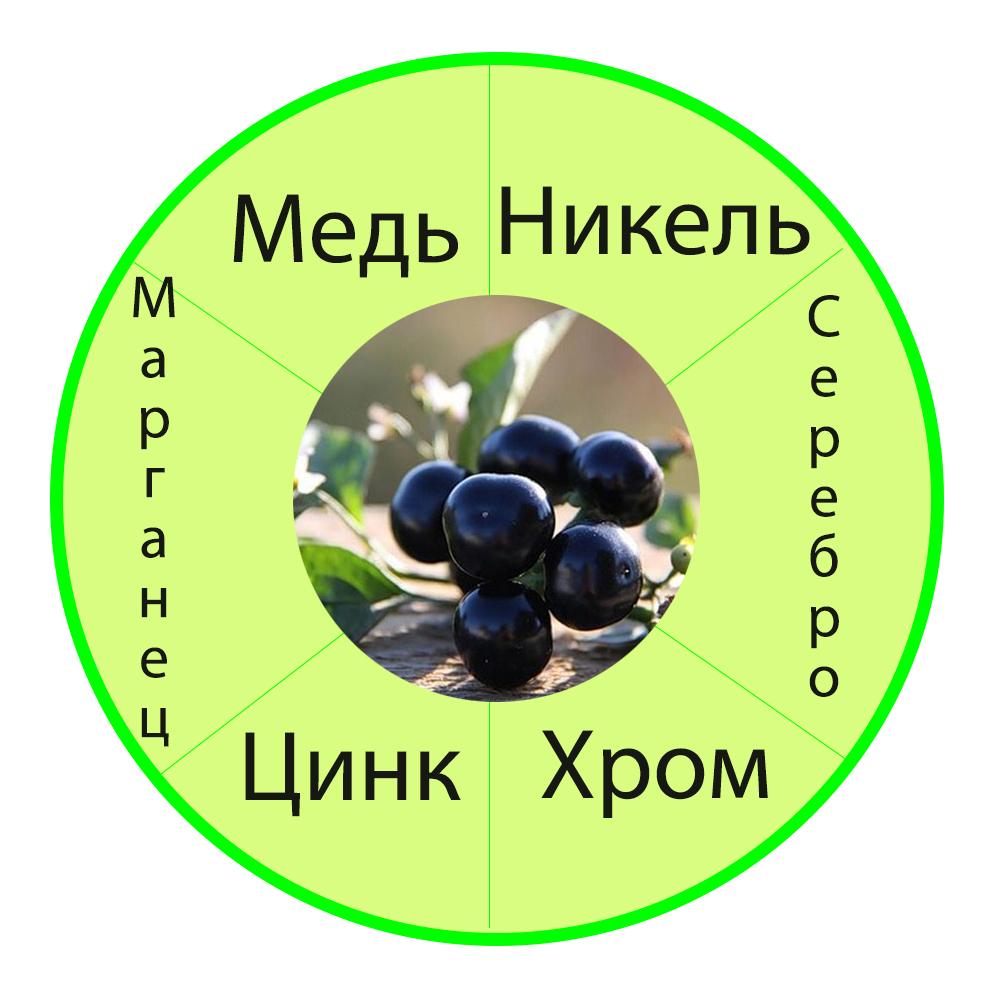 sanberri mikro-i-makroelementi