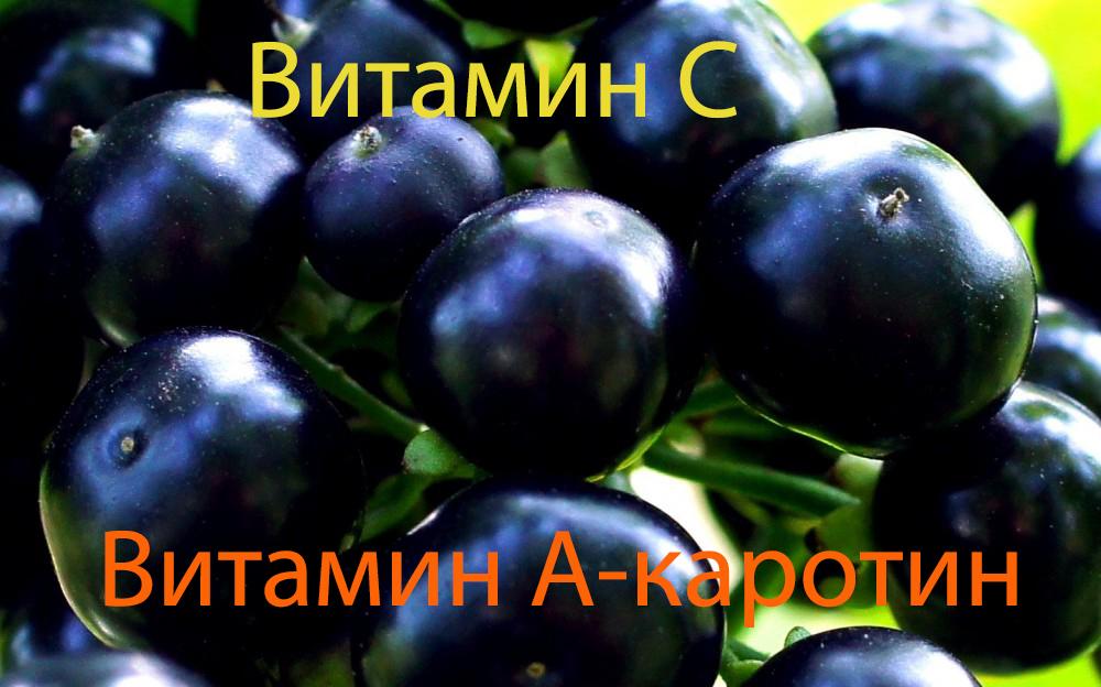vitamini-v-yagodah-sanberri